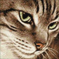 Ag 2277 Набор д/изготовления картин со стразами 'Загадочный кот' 20*20 см Гранни