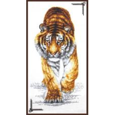 02.002 Поступь тигра