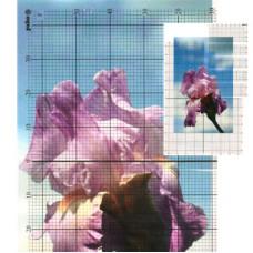 Сетка для вышивания Pako 707.090