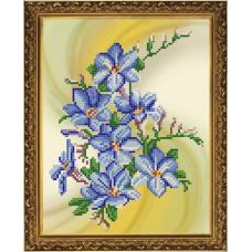 Бис4084 Рисунок на канве для вышивания бисером 'Барвинок'