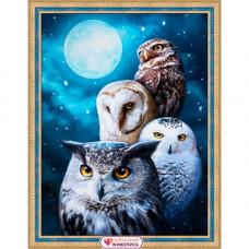 АЖ-1738 Картина стразами «Ночные совы» 30*40см