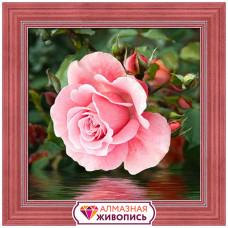 АЖ-1704 Картина стразами 'Роза у воды' 25*25см