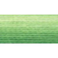 Мулине Гамма меланж цвет Р-12 ярко-зеленый-бледно-желтый