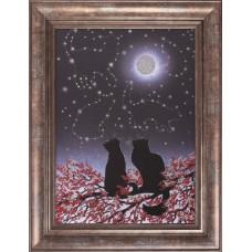 0114 Созвездия