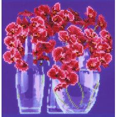 НР-3024 Канва с рисунком для вышивания бисером 'Фаленопсис' Hobby&Pro 22*22см