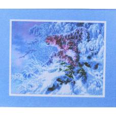 ВН1095 Снежные барсы
