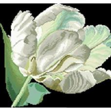 7616 Мозаика Cristal 'Белый тюльпан', 40*40 см