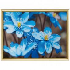 КС179 Набор для изготовления картины со стразами 'Первоцветы' 30,3*42