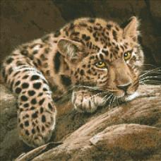 М-304 Леопард
