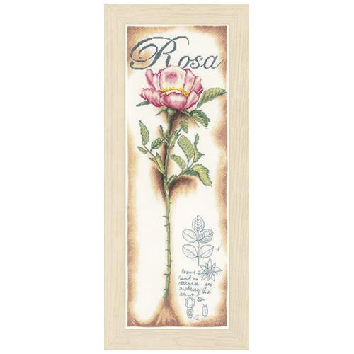 0154334-PN Розовые розы