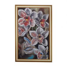 БН-3121 Любимые орхидеи