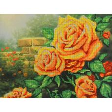 БГ-232 Жёлтые розы