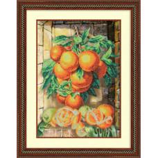 Б-1220 Апельсины