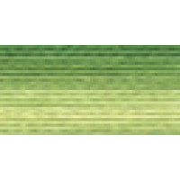 Мулине Гамма меланж цвет Р-13 темно-зеленый-ярко-желтый