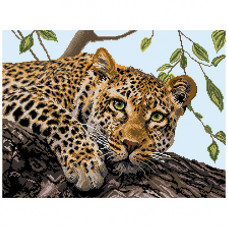 1881 Канва с рисунком Матренин посад 'Леопард' 33*45 см (37*49 см)