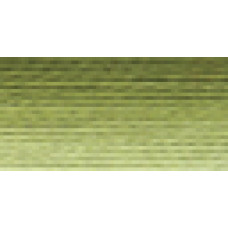 Мулине Гамма меланж цвет Р-14 фисташковый-бледно-желтый
