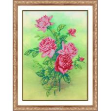 Б-1227 Розовые розы