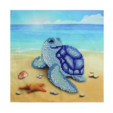 Б-0096 Морские черепашки