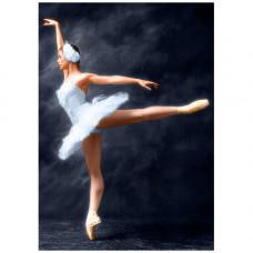 Ag 853 Набор д/изготовления картин со стразами 'Прима-Балерина' 27*38см Гранни