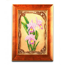 В-416 Грациозные орхидеи