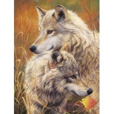 АЖ-1403 Волчья нежность
