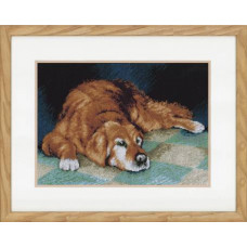 PN-0147568 Спящая собака