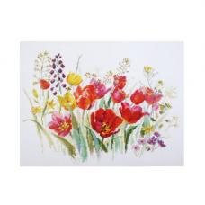 2-34 Полевые тюльпаны