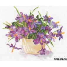 2-26 Цветущий сад: Крокусы