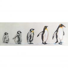 PCE751 ANCHOR Набор для вышивания 'Пингвины в ряд' 14х47 см
