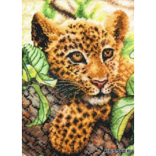 65118 Детеныш леопарда