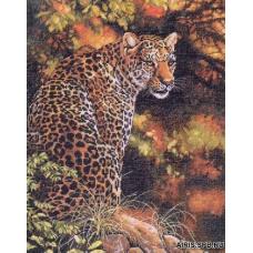 35209 Леопард