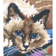 7228 Милый котик