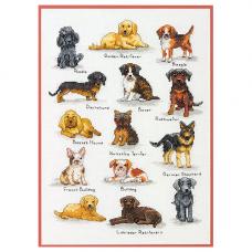 35353-70 Породы собак