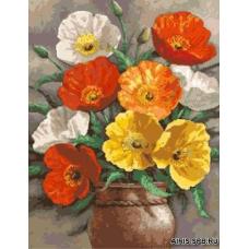 901 Тюльпаны