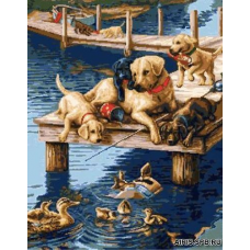 1118 Собаки и утки