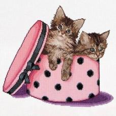 734А Котята близнецы в коробке, Аида