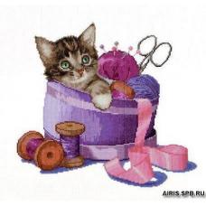 736 Котенок в корзине для шитья