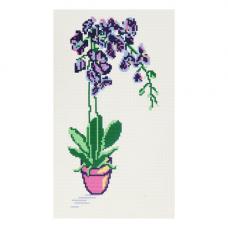 9/НП Наборы для вышивания нитками с паспарту Hobby&Pro 'Орхидея' 22*38см