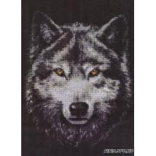 02.001 Взгляд волка