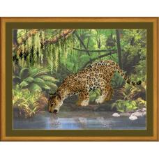 РТ-0023 Леопард у воды