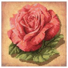 РТ-0070 Роза