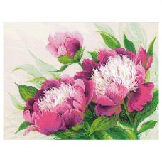 100/039 Розовые пионы