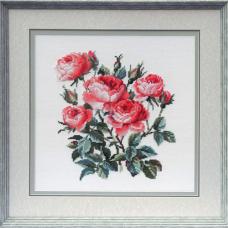 1046 Садовые розы
