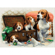 1328 Собачье семейство