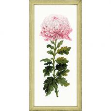 1425 Нежный цветок