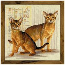 1671 Абиссинские кошки