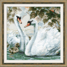 1726 Белые лебеди