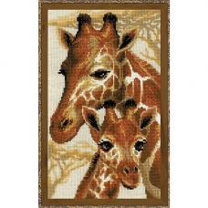 1697 Жирафы