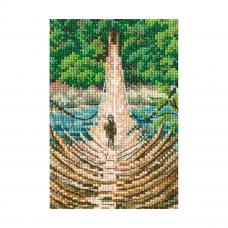 С311 Подвесной бамбуковый мост на реке Сианг