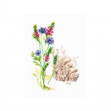 M778 Набор для вышивания РТО 'Цветущие травы'11*16см